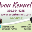 Avon Kennel's